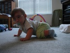 Learning to Crawl-25